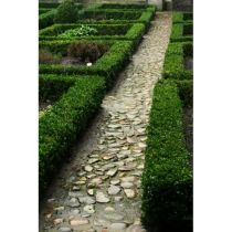 Trädgårdsanläggning Kvalitetsplan